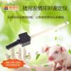 全自动猪用发情测定仪母猪专用发情测定仪