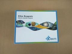 GLP-1R,大鼠胰高血糖素样肽1受体ELISA试剂盒