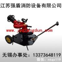 新款移动系列拖车消防炮PSY20-60