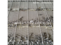 同方供应不锈钢网带 链网适用于体积大物料的烘干和传送 透气好