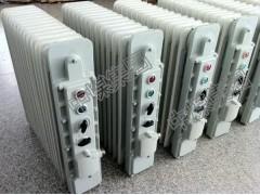 隔爆型取暖器 电热取暖器