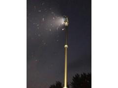 气动高位升降杆 YB-3米智能升降避雷针 进口预防电避雷针
