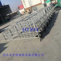 母猪连体定位栏厂家厂家生产制作质量有保证