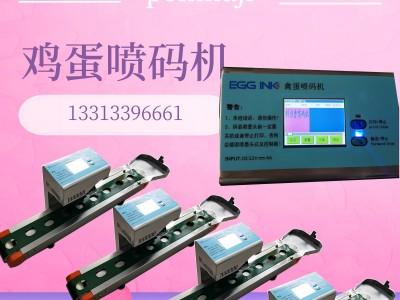 北京微型 小款单喷头鸡蛋喷码机生产厂家