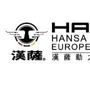 汉萨电子商务(上海)有限公司(发电机)