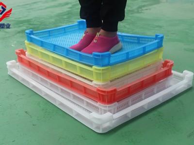 潍坊冷冻食材冷冻盒