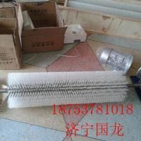 济宁国龙水泥厂常用电动滚刷式清扫器