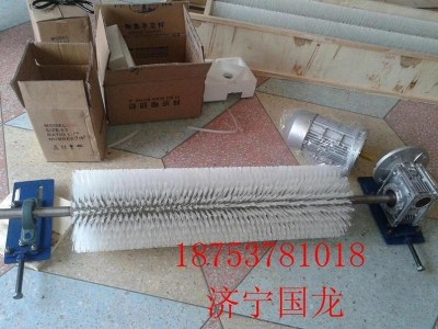 济宁国龙 乌海B1200电动毛刷式清扫器
