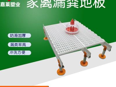 猪舍猪场漏粪板塑料养殖猪用产床