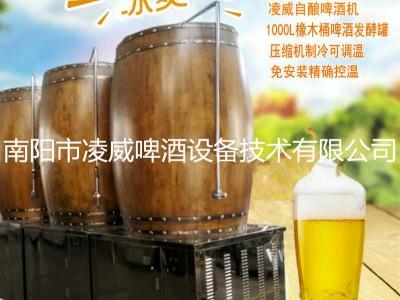 供应橡木桶发酵罐家庭自酿啤酒扎啤保鲜罐精酿小型售酒机