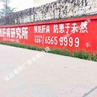 绽放品牌文化魅力广汉农村刷墙广告广汉海马汽车乡村广告