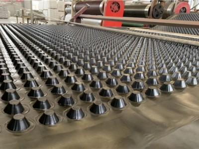 吉林屋顶绿化排水板|沈阳实力厂家排水板库存