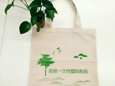厂家定做学生手提袋学校活动帆布袋 幼儿园宣传袋可印logo