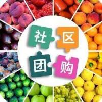 西安渭南汉中校园小程序APP的开发特点与功能