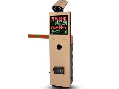 停车场系统-车牌识别一体机ZDV801-真地智能