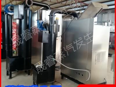 晟睿供应粉条加工生物质蒸汽发生器 生物颗粒锅炉 节能环保