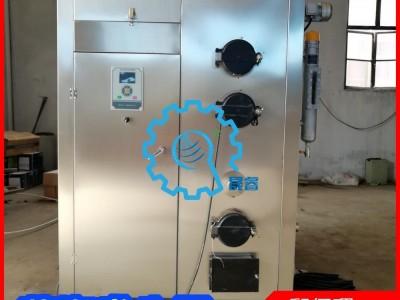 粉条加工蒸汽发生器 选晟睿生物颗粒蒸汽锅炉 生物质蒸汽发生器