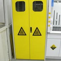 实验台全钢防爆气瓶柜 /可燃气体防爆柜 带报警 单双瓶三瓶