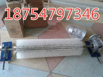 电动清扫器生产 济宁国龙清扫器 滚刷式清扫器