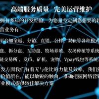 深圳有钱还龙岗以太森林坂田农牧矿游戏区块狗软件定制开发