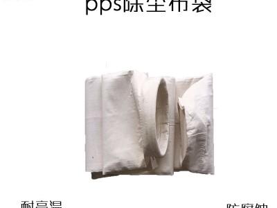 耐高温除尘布袋笼骨架pps抗腐蚀覆膜耐酸碱燃煤锅炉集尘袋