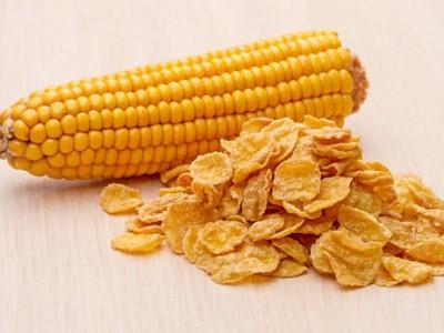 玉米片DL85膨化休闲小零食生产加工用设备  厂销