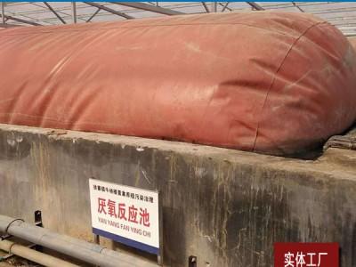 """牛鸡场500立方沼气池亳州红泥沼气袋厂家掀起沼气利用循环""""风"""