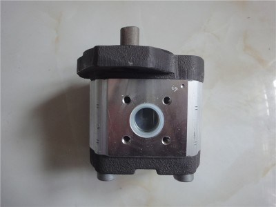 AZPF-11-008RCB20MB力士乐齿轮泵现货