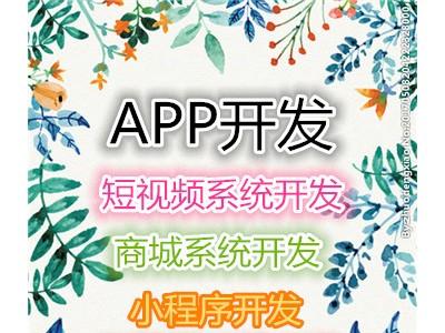 悦动圈系统开发定制源码公司