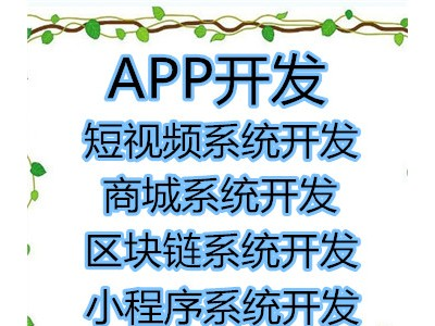 刷宝app系统开发定制源码公司