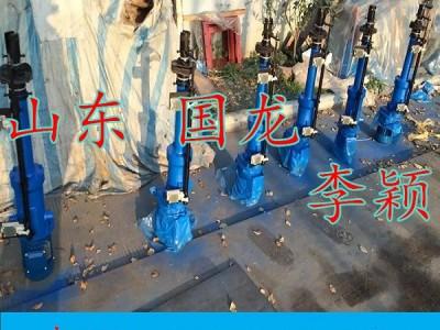 DT3000-550电动推杆·品牌【济宁国龙】