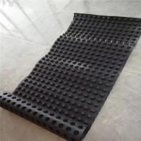 厂家直销塑料排水板 屋顶花园种植地下车库顶板用排水板