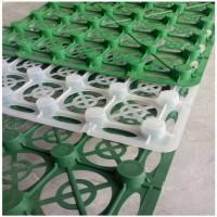 厂家直销塑料蓄排水板 屋顶花园园林绿化车库顶板用蓄排水板