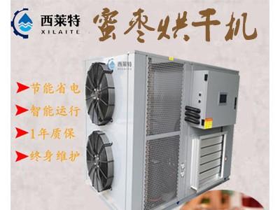 蜜枣空气能烘干机/蜜枣干燥除湿设备/厂家直销