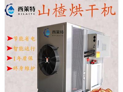 山楂热泵烘干机/山楂干燥除湿设备/节能高效
