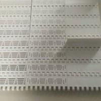 订制各种规格塑料链板传动带,金属链板带,应用广泛