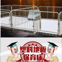 猪场专用设备 小猪母猪保育栏 仔猪保育床 猪保温箱