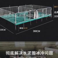 厂家直销 双体猪用产床母猪分娩床沧州泊头 养殖设备