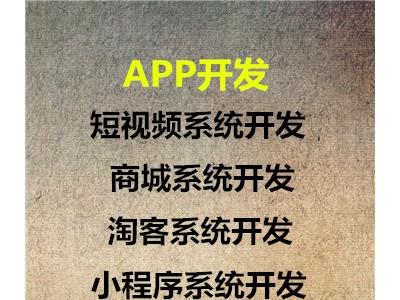 天虹红领巾APP软件系统开发定制源码公司