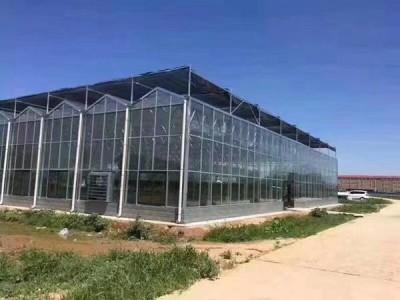 恒温大棚每亩多少钱_好用的温室大棚恒温推荐