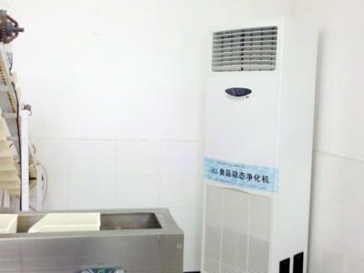 动态空气消毒机 食品空气动态消毒灭菌机