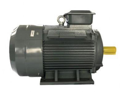 先锋电机YX3系列0.75kw高效三相交流异步电机