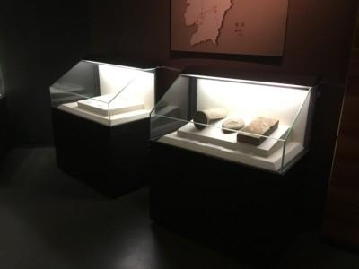专业制作博物馆展示展览陈列柜公司