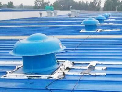 BDW-87玻璃钢屋顶风机 低噪声屋顶风机